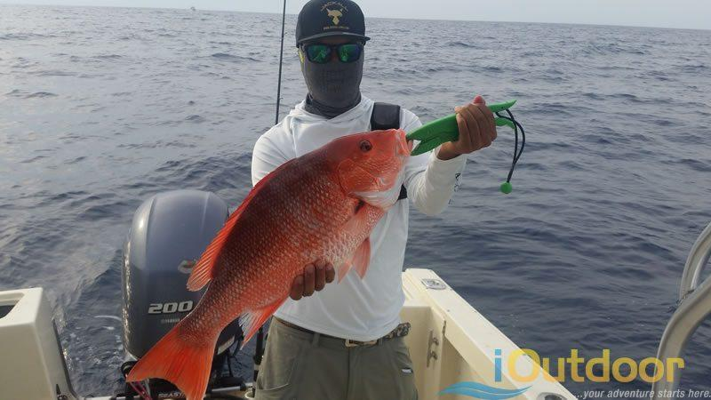 Ponce Island Fishing Charters